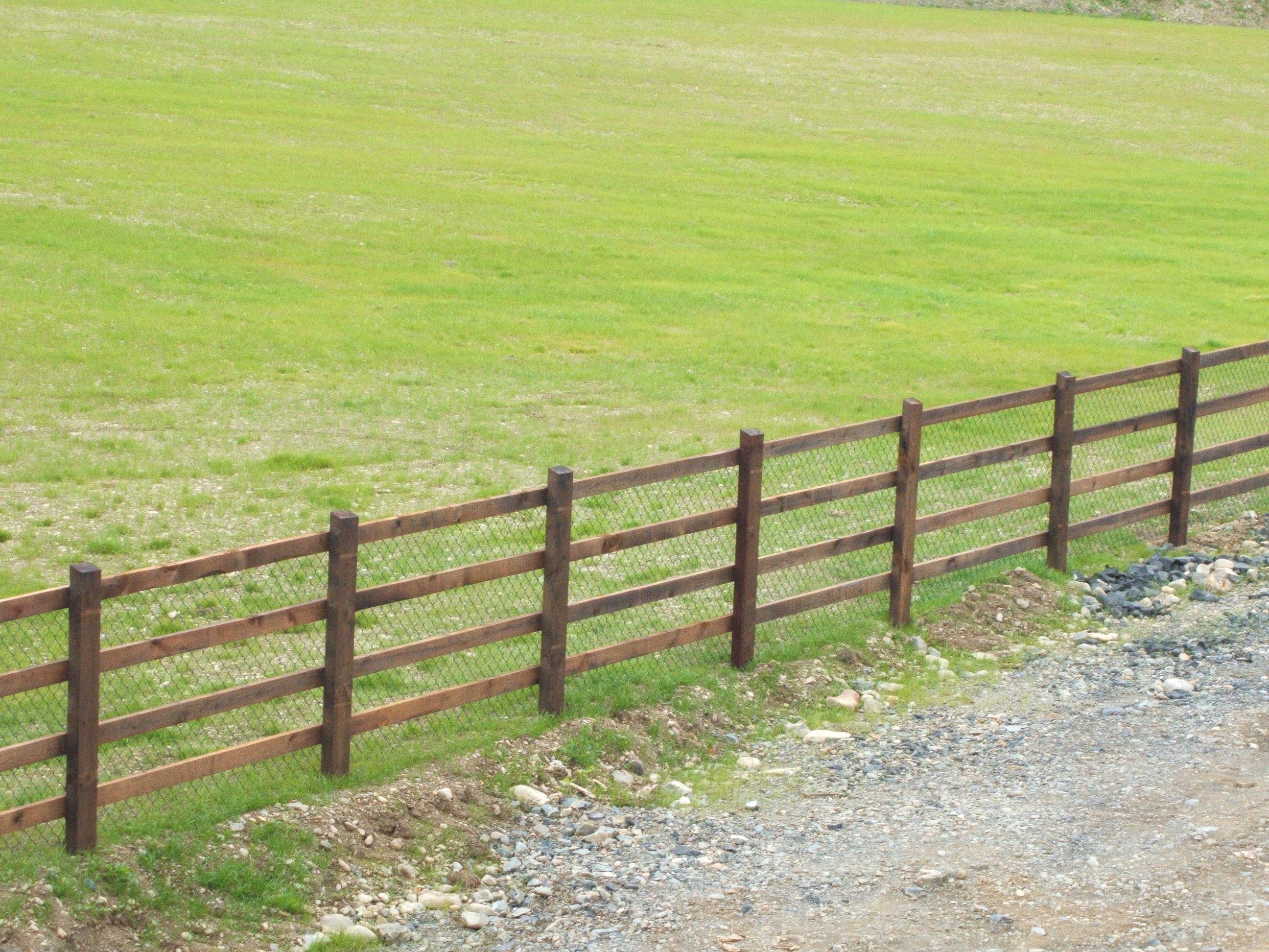 Hamilton fencing motorway